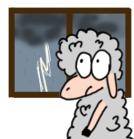 """""""Eső programok"""" otthonra"""