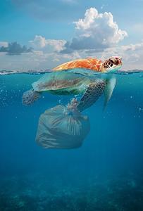 Mi a láthatatlan hulladék?