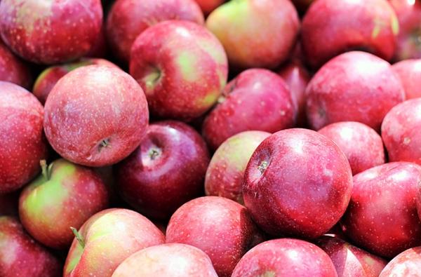 Nagy európai almaföld-teszt